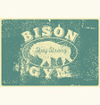 bison gym icon logo label sign badge vector image