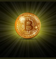 bitcoin golden coin vector image vector image