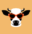 cow in glasses face flat vector image
