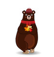 cute autumn bear in red knitted scarf and hat vector image vector image