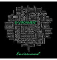 ENVIRONMENT vector image vector image