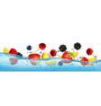 fresh fruits and berries splashing in water waves vector image vector image