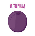 plum made in cartoon style vector image vector image