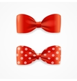 Red Bow Tie Set vector image vector image