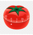 tomato timer mockup realistic style vector image vector image
