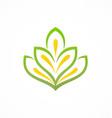 beauty flower plant logo