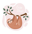cute sloth hanging on tree in a jungle cartoon vector image vector image