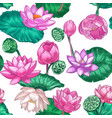 pink lotus seamless pattern gentle water lily vector image