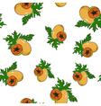 Seamless Pattern of Papaya vector image vector image