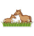 two horses in grass field with many flowers vector image