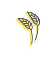 rye ear line icon wheat sign for production of vector image