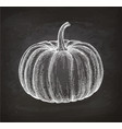 chalk sketch of pumpkin vector image