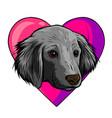 i love dogs icon design vector image vector image