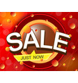 sale just nowt discount shopping concept vector image