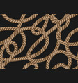 seamless pattern with marine rope vector image