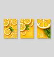 sliced orange poster set vector image