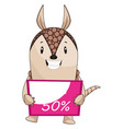 Armadillo holding sale sign on white background