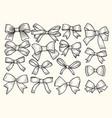 bow ribbon vector image vector image