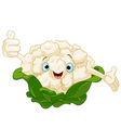 cauliflower character vector image vector image