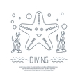 Diving icon with starfish and seaweed vector image