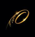 golden letter o monogram initial sign vector image vector image