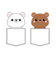 grizzly white bear set head face sitting in the vector image vector image