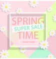 spring super sale vector image vector image