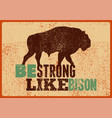 bison silhouette phrase typographical poster vector image