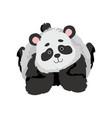 cute baby panda bear funny lovely animal vector image