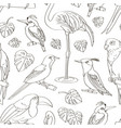 exotic birds pattern vector image vector image