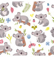 koala seamless pattern cartoon cute australian vector image vector image