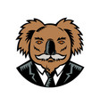 koala with moustache woodcut color vector image vector image