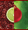 pomegranate and lime vector image vector image