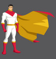 superhero asian isolated vector image vector image