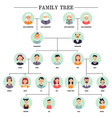 family tree human avatars relationship scheme vector image vector image