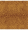 Leopard pattern repeating background vector image vector image