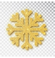christmas decoration golden snowflake covered vector image vector image