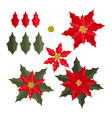 christmas elements with set of poinsettia vector image