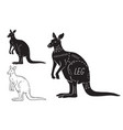 cut kangaroo set poster butcher diagram vector image vector image