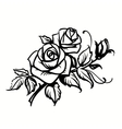 Roses Black outline drawing on white background vector image vector image