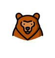 brown grizzly bear vector image