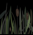bush of swamp reed on a lake vector image vector image