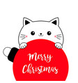 cat holding merry christmas ball big red round vector image
