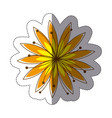 color sticker silhouette with yellow flower vector image vector image