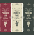 set wine label with bunches grapes vector image vector image