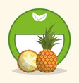 pineapple organic food diet vector image vector image