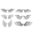 Set of eagle or angel wings vector image vector image