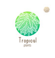 tropical jungle vector image vector image