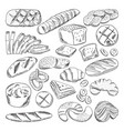 types of healthy bakery foods croissant and fresh vector image