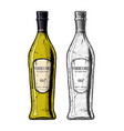 verdicchio dry white wine vector image